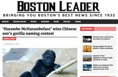 Vạch trần những câu chuyện tin tức giả mạo vì lợi ích của báo chí