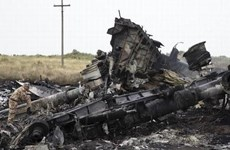 Cơ quan điều tra Hà Lan khẳng định tên lửa bắn rơi MH17 tới từ Nga
