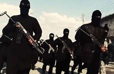 Phiến quân IS áp dụng chiêu thức mới trong chiêu mộ tân binh