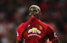 """Fan Manchester United """"nổi cáu"""" vì Paul Pogba tỏa sáng ở tuyển Pháp"""