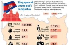 [Infographics] Campuchia vững bước trên con đường phát triển