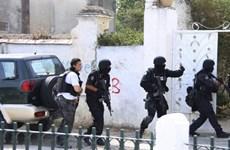 Tunisia bắt giữ 4 phần tử khủng bố thề trung thành với IS
