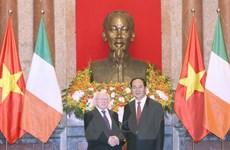 Chủ tịch nước Trần Đại Quang hội đàm với Tổng thống Ireland
