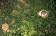 """Những hình ảnh """"độc"""" về bộ tộc sống biệt lập trong rừng Amazon"""