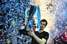 Hạ Djokovic, Murray vô địch ATP Finals, kết thúc năm ở ngôi số 1