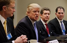 Ông Donald Trump sẽ yêu cầu điều tra về cáo buộc gian lận cử tri