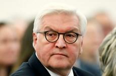Pháp đề cao Tổng thống đắc cử Đức Frank-Walter Steinmeier