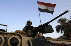 Quân đội Ai Cập tiêu diệt 6 phần tử khủng bố ở Bắc Sinai