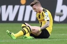 Marco Reus dính chấn thương: Vận đen vẫn chưa chịu buông tha