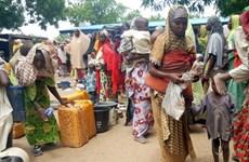 LHQ phản đối Cameroon cưỡng ép hồi hương người tị nạn Nigieria