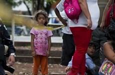 Cảnh báo hậu quả đối với trẻ em Mexico bị mồ côi và bỏ rơi