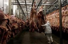 Vụ thịt bẩn Brazil: Hai tập đoàn BRF và JBS thiệt hại 1,74 tỷ USD