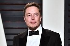 Báo Anh: Tỷ phú Elon Musk sắp cưới vợ cũ của Johnny Depp