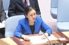 Việt Nam kêu gọi tìm giải pháp hòa bình cho cuộc chiến Syria
