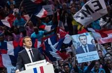 Bầu cử Tổng thống Pháp: Các cử tri ở hải ngoại đi bỏ phiếu sớm