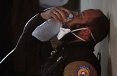 Syria ngừng bắn phục vụ điều tra về tấn công vũ khí hóa học