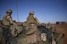 Quân đội Pháp tiêu diệt hơn 20 tay súng thánh chiến tại Tây Phi