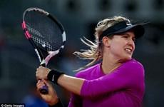 Người đẹp Eugenie Bouchard thua set trắng trước Kuznetsova