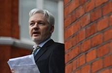 Nhà sáng lập Wikileaks Assenge nói gì sau khi Thụy Điển dừng điều tra?