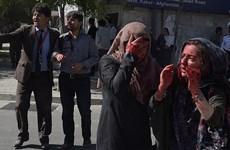 Cộng đồng quốc tế lên án vụ đánh bom khu ngoại giao ở Kabul