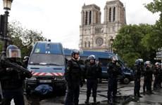 Một cảnh sát bị thương trong vụ tấn công ở nhà thờ Đức Bà Paris