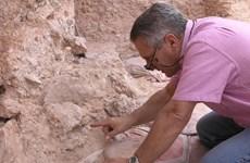 Những bằng chứng mới đầy bất ngờ về nguồn gốc của loài người
