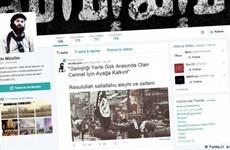 Truyền thông xã hội thúc đẩy chủ nghĩa cực đoan và chủ nghĩa dân túy?