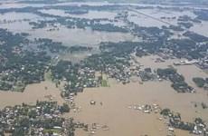 Mưa lũ nghiêm trọng tại Ấn Độ, ít nhất 52 người thiệt mạng