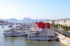 Quảng Ninh ngừng cấp phép hơn 480 tàu du lịch do bão số 2