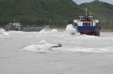 Tàu chìm ở Nghệ An: Đã cứu được 7 người và tìm thấy một thi thể