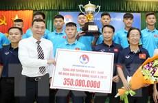 Vô địch Đông Nam Á, U15 Việt Nam được thưởng 400 triệu đồng