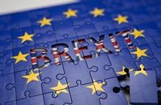 Chính phủ Anh cam kết sẽ thành lập 20 cơ quan công quyền mới
