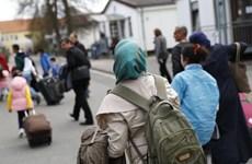 Dân số có nguồn gốc nhập cư ở Đức đã tăng lên mức kỷ lục