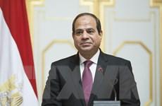 Đa số đảng phái tại Ai Cập ủng hộ Tổng thống El-Sisi tại vị