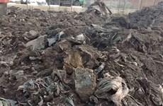 Phát hiện doanh nghiệp đổ chất thải nguy hại ra môi trường