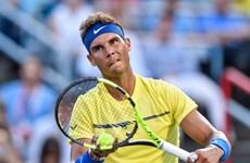 Nadal cay đắng chia tay Rogers Cup, lỡ cơ hội lên số 1 thế giới