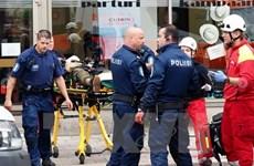 Cảnh sát bắt thêm 2 nghi phạm vụ tấn công bằng dao tại Phần Lan