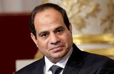 Ai Cập thúc đẩy thỏa thuận với Nga xây nhà máy điện nguyên tử
