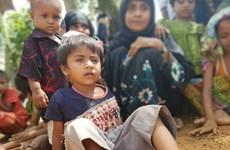 HĐBA Liên hợp quốc thảo luận về tình trạng bạo lực Myanmar