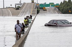 Mỹ: Cảnh báo nguy cơ nổ nhà máy hóa chất do siêu bão Harvey