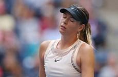 'Búp bê Nga' Maria Sharapova ngậm ngùi chia tay US Open 2017