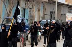 IS nắm giữ 'vũ khí' đáng sợ từ 11.000 cuốn hộ chiếu Syria trắng
