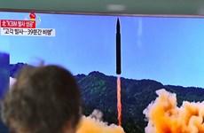 Ảnh hưởng của Nga có thể giúp giải quyết khủng hoảng Triều Tiên