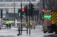 Anh: Số vụ bắt giữ liên quan tới khủng bố tăng cao kỷ lục