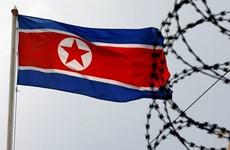 8 biện pháp Triều Tiên sử dụng để ứng phó với các lệnh trừng phạt