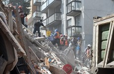 Động đất mạnh tại Mexico: Số người chết tăng lên gần 250 người