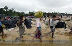 Bangladesh cấm cung cấp phương tiện liên lạc cho người Rohingya