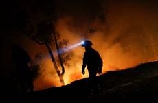 Bộ trưởng Nội vụ Bồ Đào Nha từ chức sau thảm họa cháy rừng