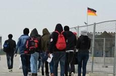 Nước Đức sốc vì người tị nạn được khuyến khích bán dâm