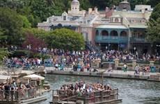 Phát hiện khuẩn Legionella gây bệnh phổi tại công viên Disneyland